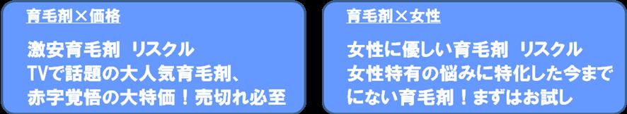 それぞれのユーザーニーズに合わせた広告文 例