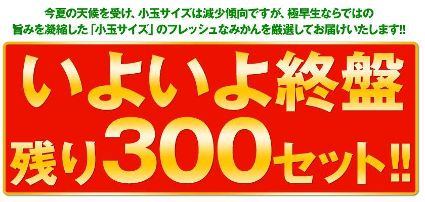 スノッブ効果事例:熊本風土