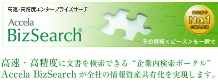 Accela BizSearch